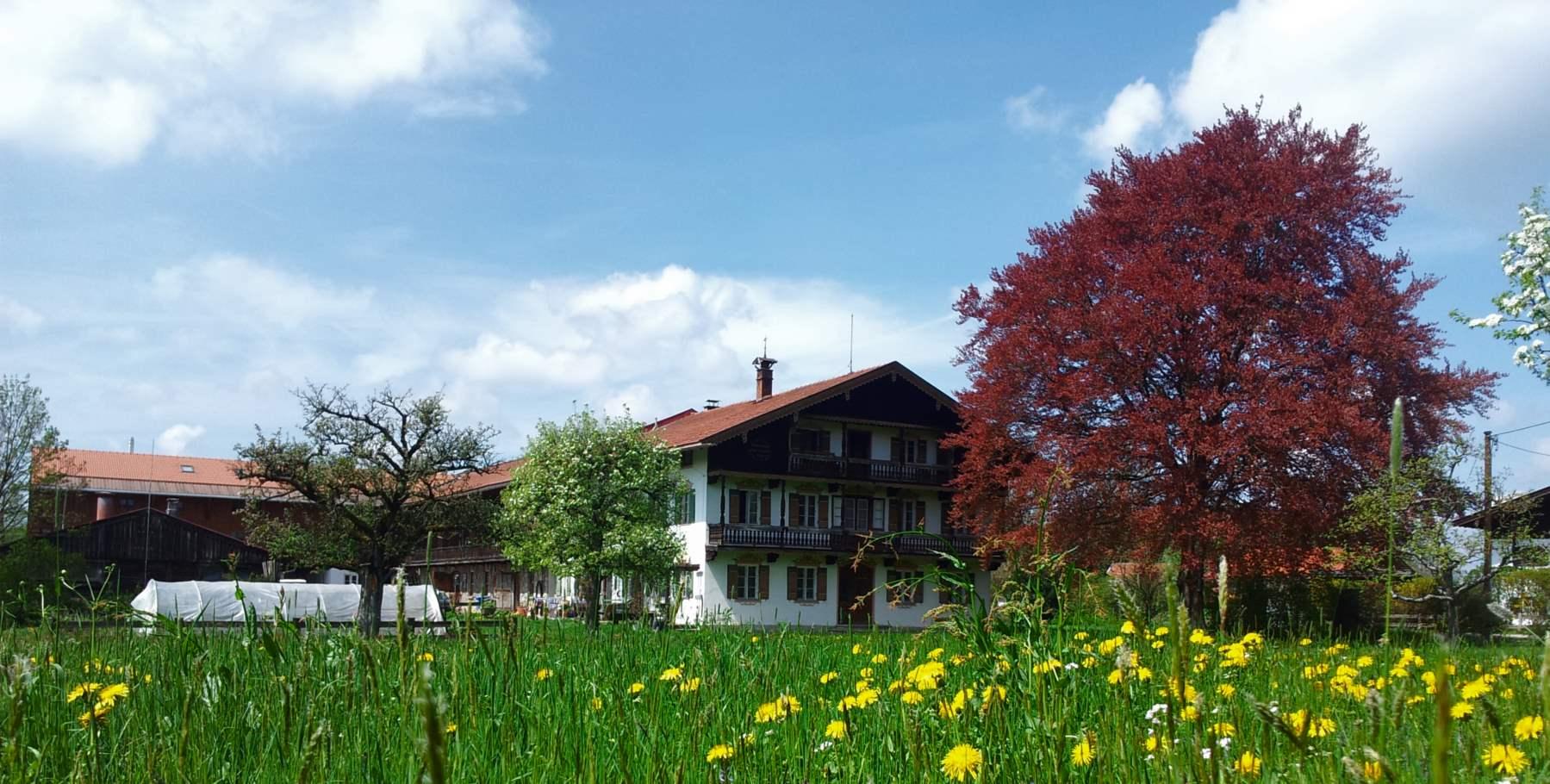 saliterhof 1799